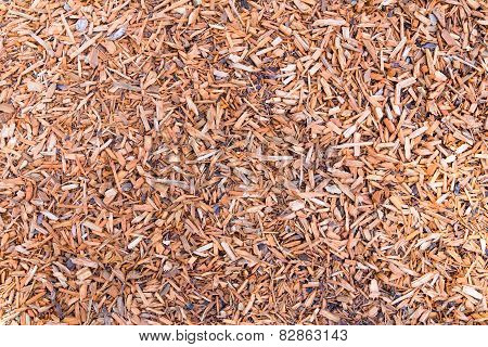 Woodchips on ground as background