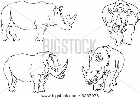 vector illustration sketch of rhino