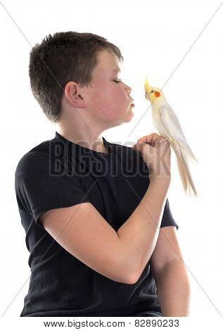 Cockatiel And Boy