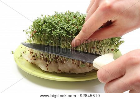 Hand With Knife Cuts Fresh Green Cress