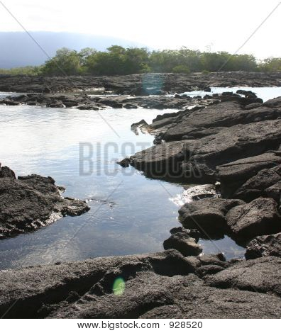 Ocean And Lava Rock Scenic View