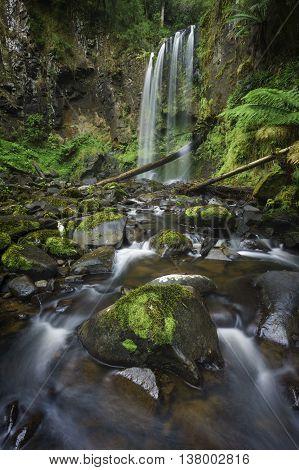 Hopetoun Falls in the Otways National Park, Victoria, Australia