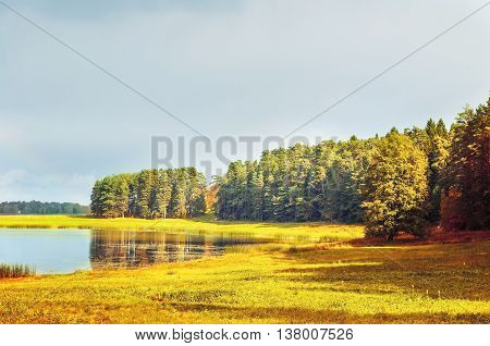 Autumn sunny landscape of autumn forest near the river.Soroti river and autumn yellowed forest trees -autumn natural landscape of autumn forest nature lit by bright autumn sunlight. Soft focus applied