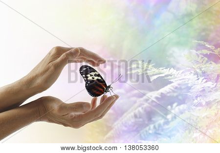 A moment to remember - Female hands gently cupped around a still closed butterfly with a faded rainbow bokeh effect woodland nature scene in the background and copy space on right