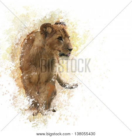 digital painting of  Lion Cub
