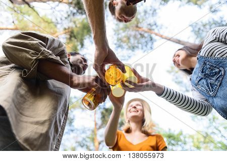 Low angle of friends celebrating event in nature. They are clinking bottles of beer and smiling. Men and women are standing in a circle