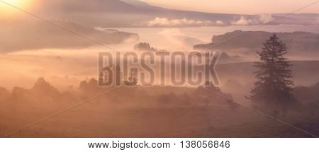 Foggy colorful summer morning in the mountains