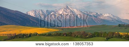 Sunny summer sunset in the Alps, bright colorful summer sky