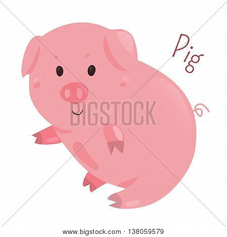 Pig. Genus Sus, Suidae of even-toed ungulates. Related creatures peccary, babirusa, warthog. Part of series of cartoon home animal species. Domestic pets. Sticker for kids. Child fun icon. Vector