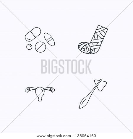 Hammer, broken leg and medical pills icons. Uterus and ovary linear sign. Flat linear icons on white background. Vector
