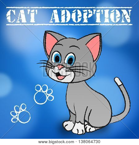 Cat Adoption Means Guardianship Pet And Adopted