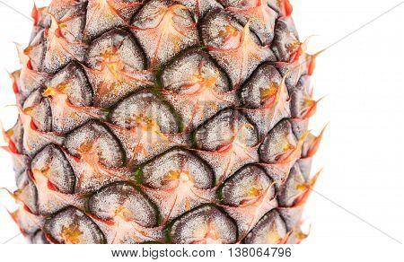 pine apple fruit isolated on white background