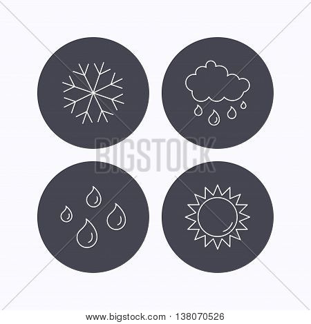 Snowflake, sun and rain icons. Water drops linear sign. Flat icons in circle buttons on white background. Vector
