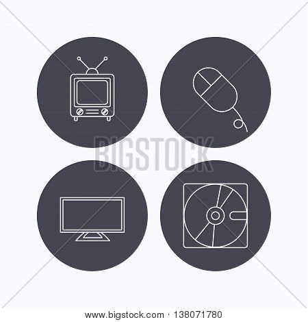 Hard disk, pc mouse and retro tv icons. Widescreen TV linear sign. Flat icons in circle buttons on white background. Vector