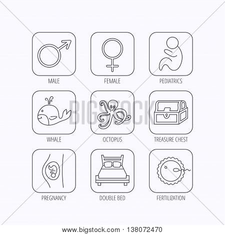 Fertilization, pregnancy and pediatrics icons. Baby child, whale and octopus linear signs. Treasure chest, double bed icons. Flat linear icons in squares on white background. Vector