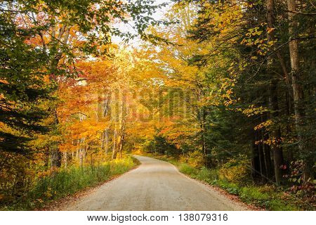 Rural dirt road in the Green Mountains of Vermont during fall foliage.