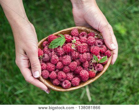Wooden bowl full of raspberries in the female hands.