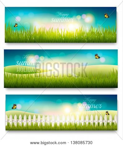 Three beautiful summer meadow landscape banners with butterflies. Vector.