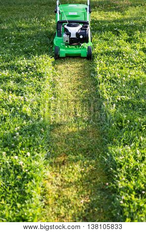Mowing the high lawn. Lawn mower. Lawn mower