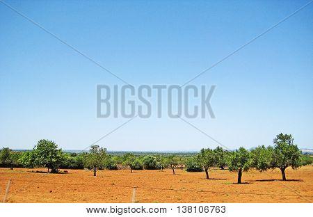 Hinterlands Of Majorca, Balearic Islands