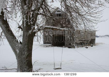 Ice,Snow & Icicles
