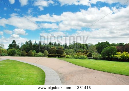 Forest And Garden On Bright Summer Day