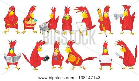 Set of funny parrots engaged in such matters as shopping, measuring waist, working on laptop, reading newspaper, using phone, megaphone, magnifier. Vector illustration isolated on white background.