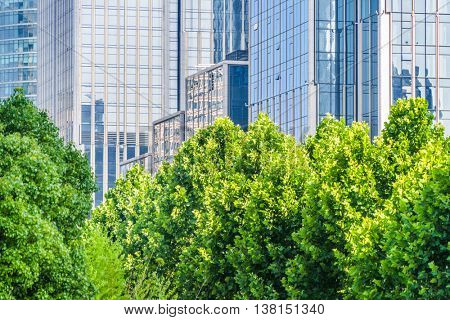 green trees front of modern glass office building