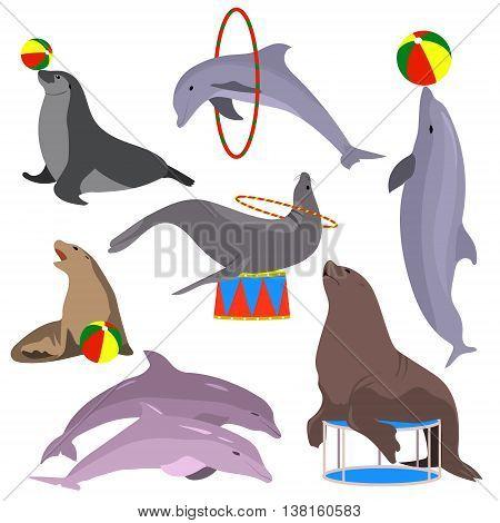 Marine circus animals set. Vector illustration. Flat. Dolphins, seal, sea lion, fur seal Marine theater