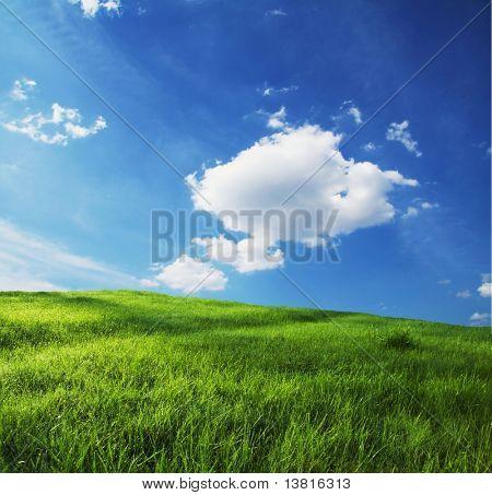 Grüne Wiesen und Himmel für Hintergrund