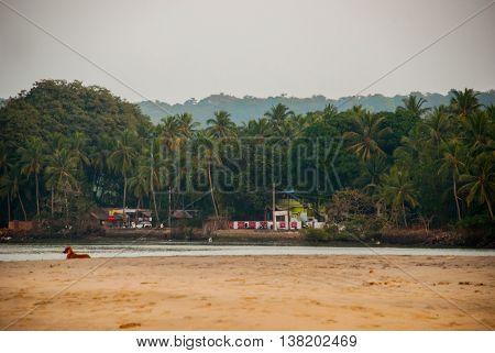 Evening Landscape, Twilight Of The Sea. Goa State, India.