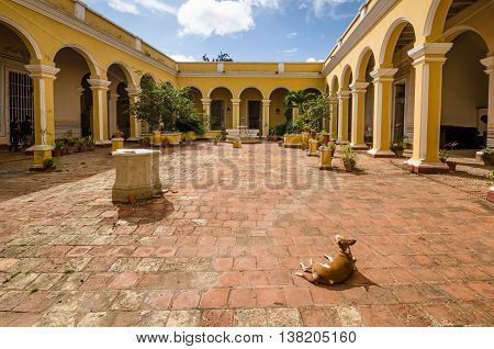 TRINIDAD - CUBA, JUNE 15, 2016: A dog basks in the sunshine in the courtyard of the Municipal History Museum housed in the beautiful neoclassical Palacio Cantero built in the early 1800s.