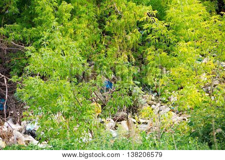 Illegal bulk waste discarded. Landfill in the river. polluted environment. Environment problem