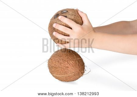 Two hands holding a coconut and try to break them another isolated on white background