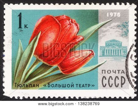 MOSCOW RUSSIA - DECEMBER 2015: a post stamp printed in the USSR shows Bolshoi Theatre and a red tulips the series