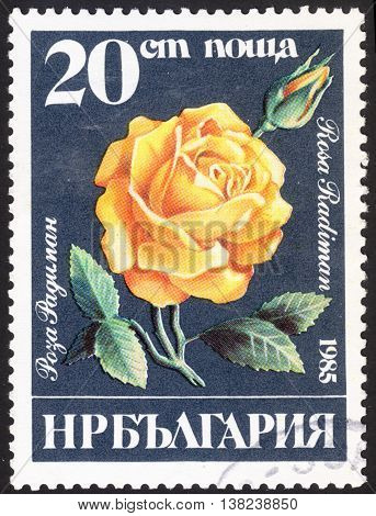 MOSCOW RUSSIA - DECEMBER 2015: a post stamp printed in BULGARIA shows a flower with the inscription