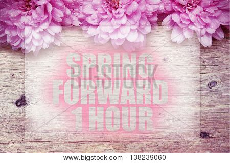 pink flowers on wooden with word Spring forward 1 hour