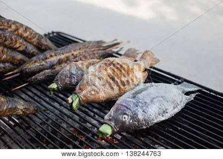 Hot grill fishes such as Catfishes and Nile tilapias on the mesh