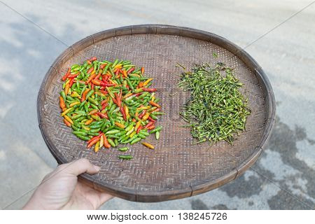 Red chillies ,Yellow chillies and green chillies pepper on the threshing basket