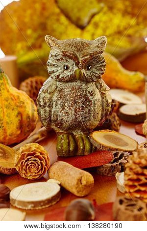 Autumn decoration with autumn colors, owl, pineal.