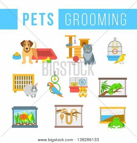 Animals pets grooming flat colorful vector icons. Dog with a bowl, bedding and toys. Cat with a ball and cat tree. Canary, rabbit, parrot, hamster, chameleon, frog, snake in cages. Fish in aquarium