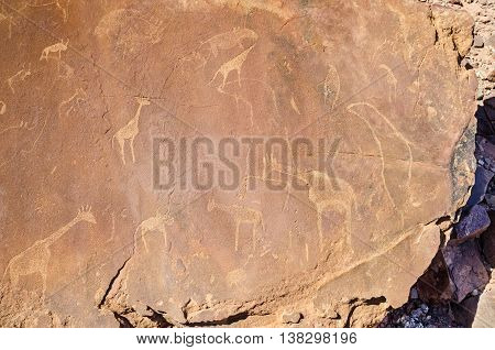 Rock carvings in Twyfelfontein approved as Namibia's first UNESCO World Heritage Site in the Kunene Region of north-western Namibia. The carvings represent animals such as rhinoceroses ostriches and giraffes as well as african seal.