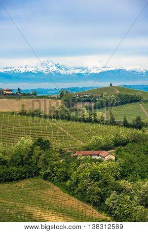 Vineyards of Langhe Piedmont UNESCO world heritage