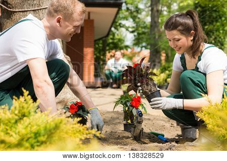 Gardeners Planting Red Flowers