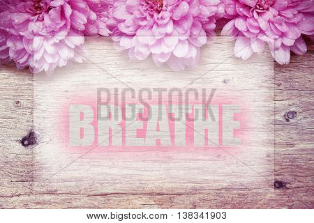 pink flowers on wooden with word Breathe