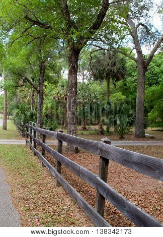 Old wood fence near street with trees and grass