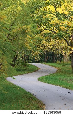 Walnut Trees In Autumnal Park, Large Detailed Vertical Landscaped Autumn Path Scene, Twisting Tarmac Walkway, Winding Asphalt Road Zigzag Perspective, Walnuts Parkland Pavement, Fall Solitude Concept, Green Lawn