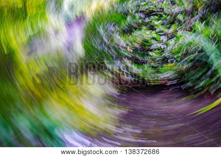 abstract natural background in summer in Germany