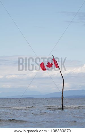 A Canadian flag standing in the Pacific Ocean.
