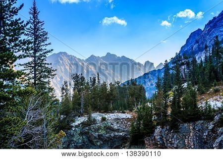 A morning in the forest and mountains of Grand Teton National Park